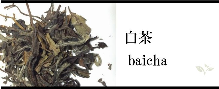 baicha-b1